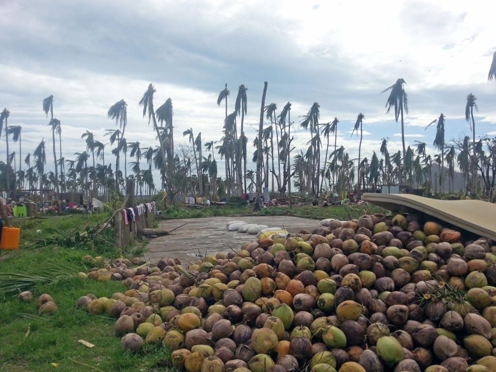 """Das Dorf Danao auf der philippinischen Insel Leyte nach dem Taifun """"Haiyan"""" (c) Marilou Misagal-Bosshammer"""